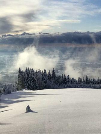 Schwarzwald, der weiße Traum (Herrischried)