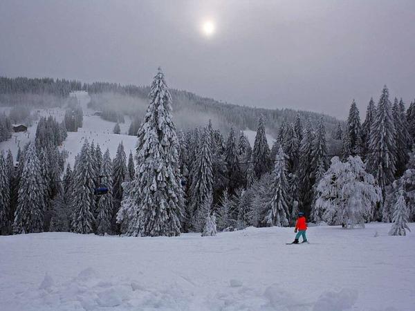 Winterfeeling (Feldberg)