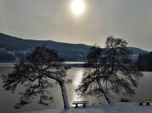 Dezembersonne am Titisee