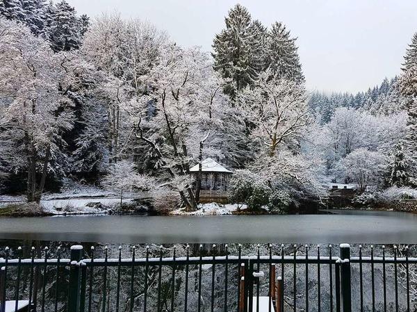 Sonntagmorgen im Februar am Waldsee (Freiburg)