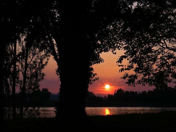 Sonnenuntergang am Rhein bei Breisach