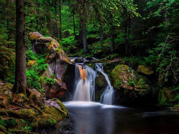 Sommer am Krai-Woog-Gumpen (Hotzenwald)
