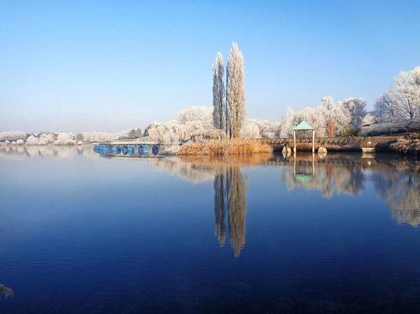 Klar, kalt, still - Wintermorgen im Freiburger Seepark