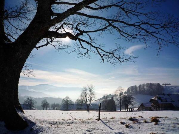 Ein Wintertag (Münstertal)