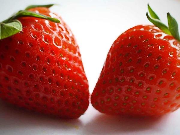 Erdbeeren in Hausach