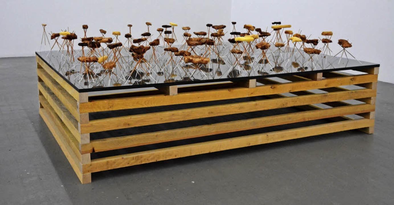 "Jan Kopp, ""Constellation ordinai...17;abeille)"", Installation 2017   | Foto: Annette Mahro"