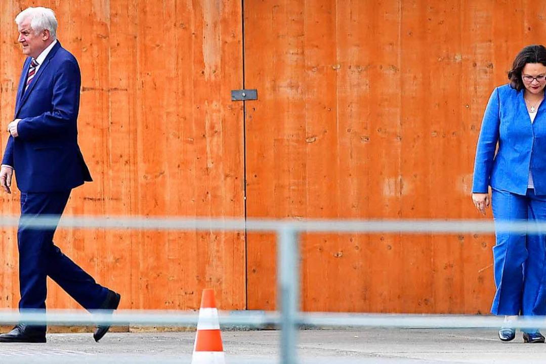 Horst Seehofer und Andrea Nahles verla...ffen das Kanzleramt per Nebenausgang.   | Foto: dpa