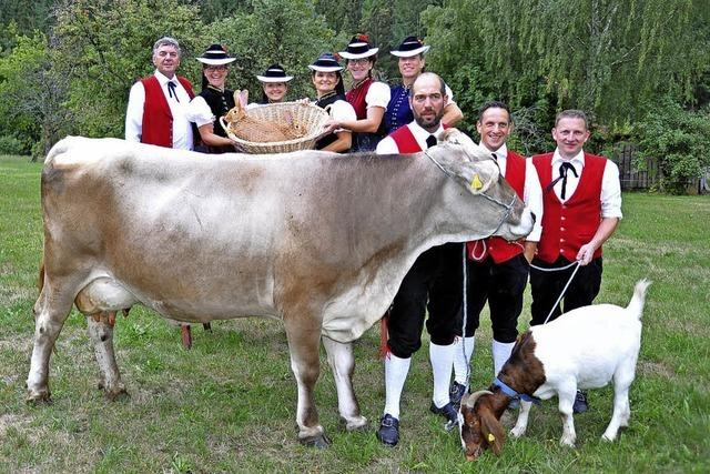 Almrock und tolle Kühe
