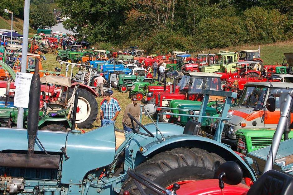 Mehr als 230 Fahrzeuge gab es bei der Oldtimer- und Schlepperausstellung zu sehen, die der Musikverein Dossenbach organisiert. (Foto: Petra Wunderle)