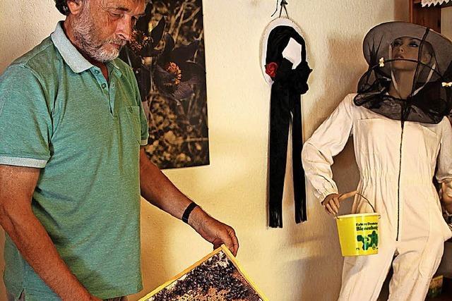 Kampf gegen das durch Chemieeinsatz verursachte Bienensterben