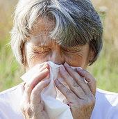 Alter schützt vor Allergien nicht