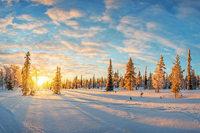 In Lappland die Winterwelt genießen bei einer BZ-Leserreise mit Direktflug ab Stuttgart, Halbpension und tollen Ausflügen