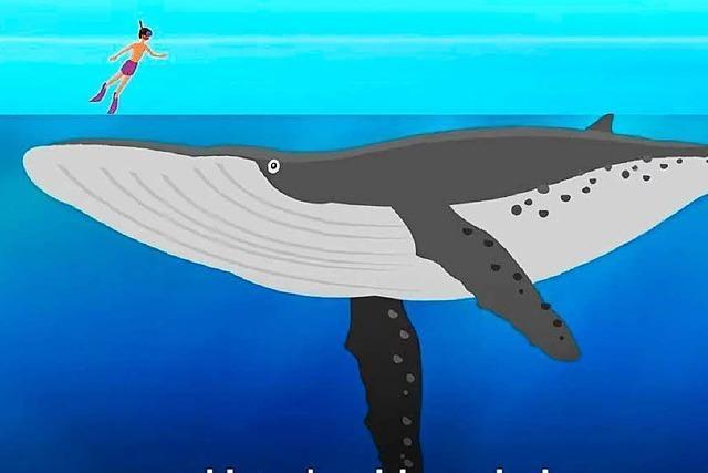 Kurzfilm zum Wochenende: Diese Animation zeigt, wie tief der Ozean wirklich ist