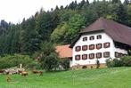 Kohlenbachtag – Veranstaltung im Rahmen der Heimattage in Waldkirch 2018