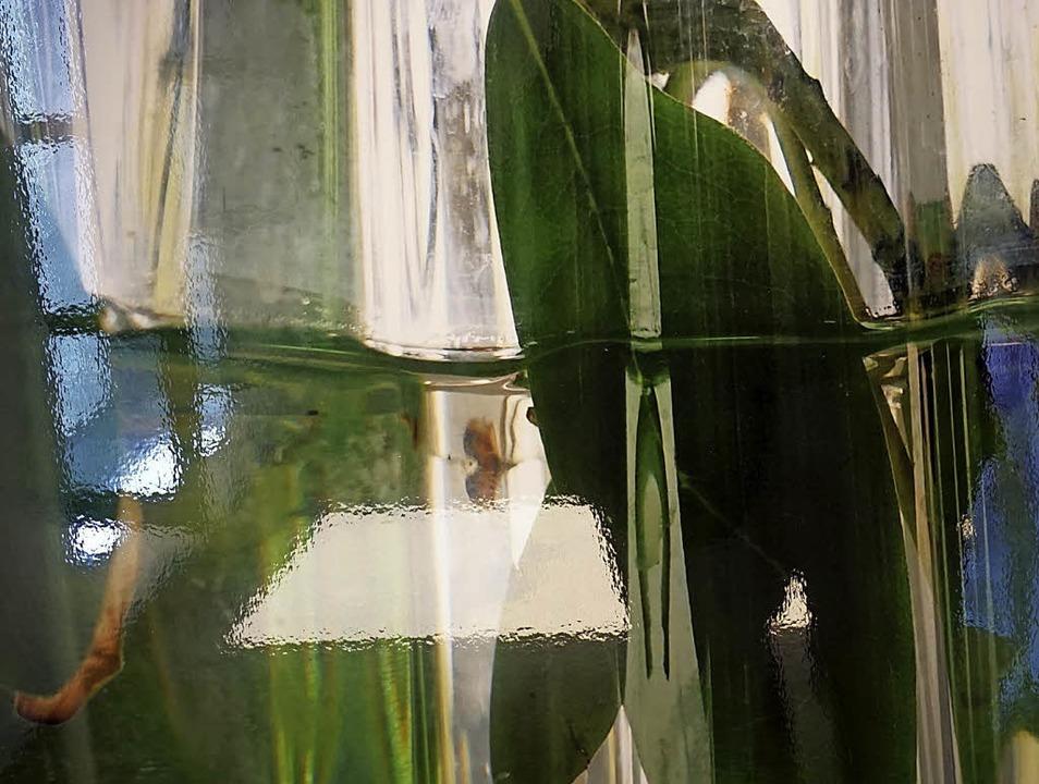 Das Foto zeigt den Ausschnitt einer Fo... die derzeit im Radbrunnen ausstellt.   | Foto: Paul Klock