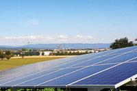 Das sind die Erfahrungen nach einem Jahr Solarpark in Herten