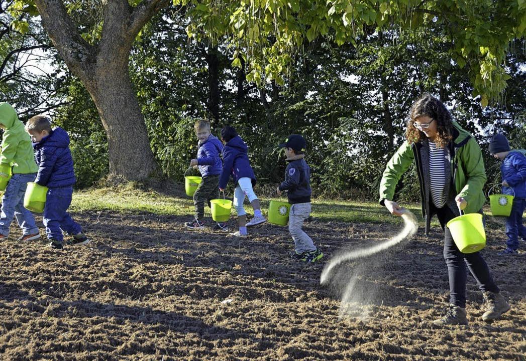 Kinder säen eine Blumenwiese ein - Offenburg - Badische Zeitung