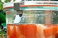 Milchsauer eingelegt: Wasser, Salz und Geduld
