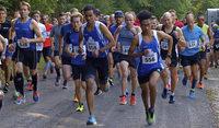 Läufer stürmen Waieländer Volkslauf