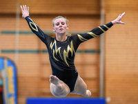 Fotos: Turnspektakel beim Karl-Wettach-Mixed-Wettkampf in Freiburg