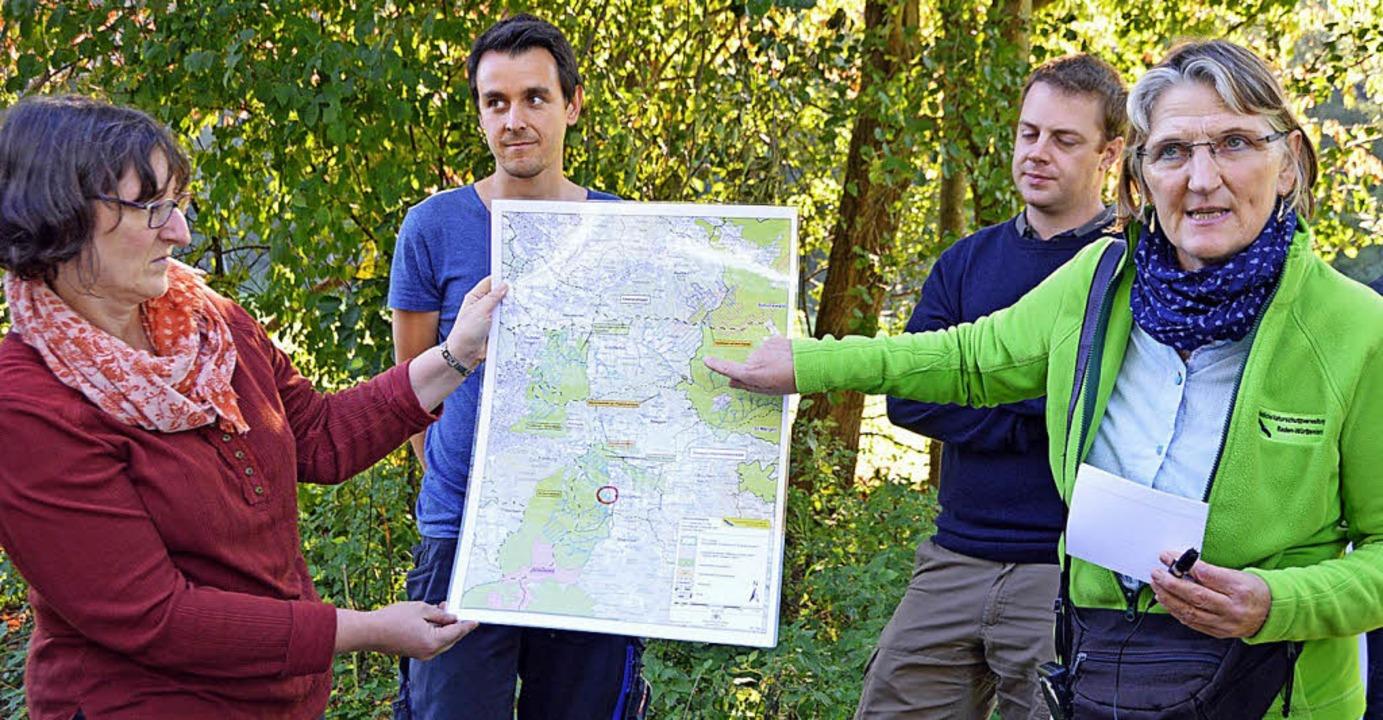 Am Kirchzartener Engenwald erklärt die..., Roßkopf und Zartener Becken liegen.   | Foto: Gerhard Lück