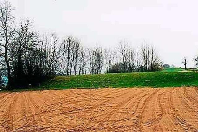 Ein Historiker erzählt, wie Rheinfeldens umliegende Dörfer im 30-jährigen Krieg gelitten haben
