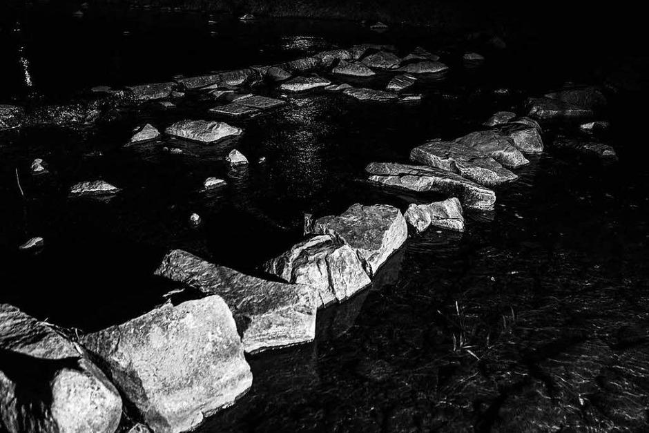 Dreisam bei Nacht (Foto: Carlotta Huber)