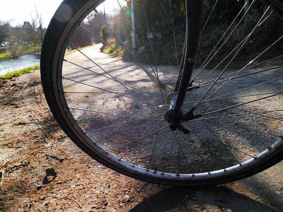 Auf dem rechten Wiese-Ufer fordern Rad...nehmen, wenn sie Kapazitäten frei hat.  | Foto: Willi Adam