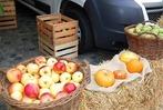 Fotos: Apfelmarkt und Hela in Laufenburg
