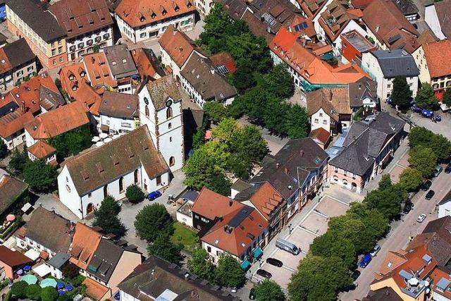 Kandidaten für die Wahl in Schopfheim im Interview