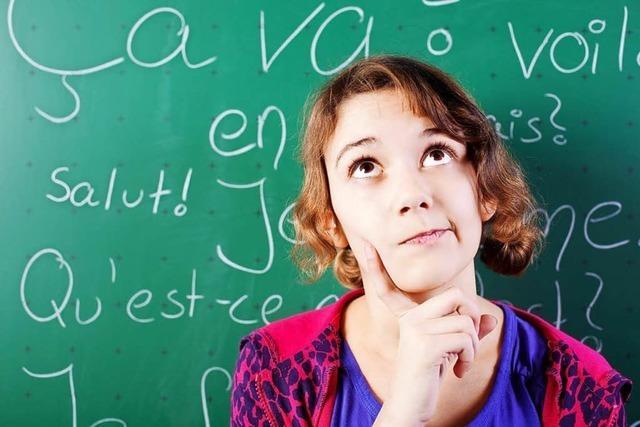 Unterwegs in der Welt der Sprachen: Fremdsprachenunterricht an der Merian-Schule