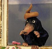 """Figurentheater Marotte spielt das Kinderbuch """"Vom kleinen Maulwurf, der wissen wollte, wer ihm auf den Kopf gemacht hat"""""""