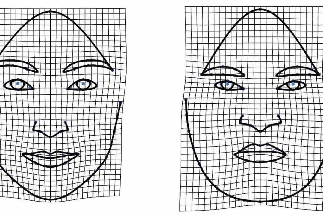 Das gemorphte Gesicht links  schätzten...ettanteil rechts dagegen als dominant.  | Foto: -