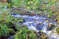 Sorge um Pestizide - Wasserversorger verklagt Land