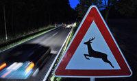 Ob Pieps-Töne und Reflektoren Wildunfälle verhindern, ist fraglich