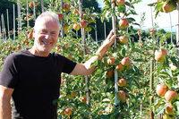 Wie ökologisch ist Apfelsaft in Plastikschläuchen?