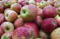 Acht Tipps, wie Sie Äpfel lecker verwerten können