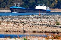 In der Schweiz kommen fast keine Schiffe mehr an – wegen Niedrigwassers