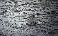 Warum bilden sich Blasen auf Pfützen, wenn es stark regnet?