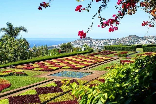 Madeira verzaubert seine Besucher