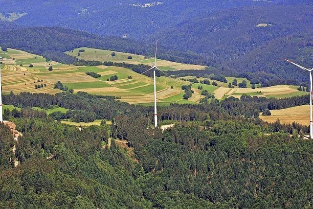 Windpark als Kapitalanlage