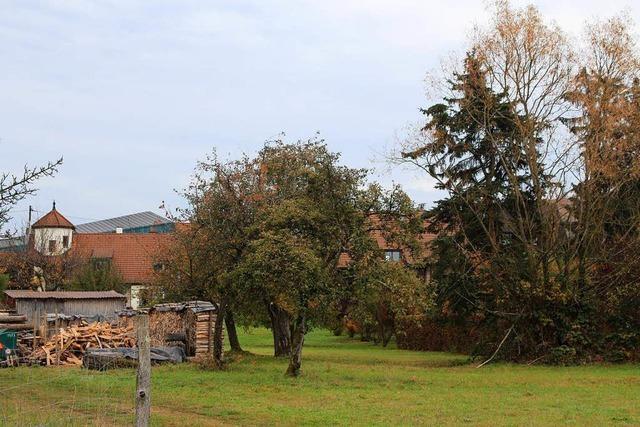 Märzengärten wieder Thema im Maulburger Gemeinderat