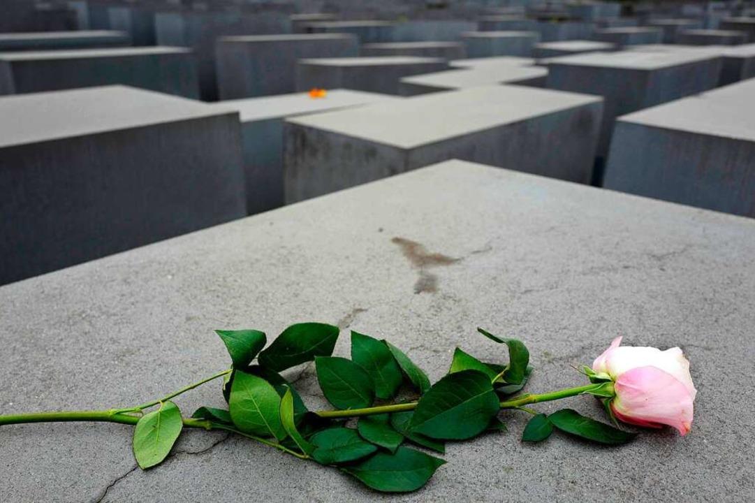 Eine Rose liegt auf dem Holocaust-Mahn... des Gedenkens an die Novemberpogrome.  | Foto: AFP