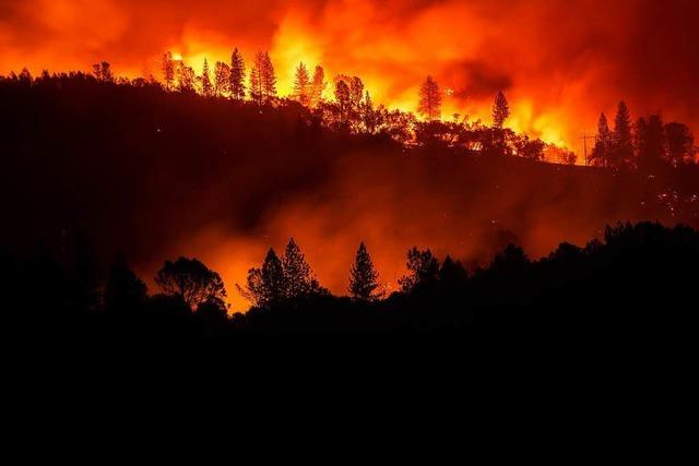 Mindestens 31 Tote bei Waldbränden in Kalifornien - Promi-Ort Malibu evakuiert