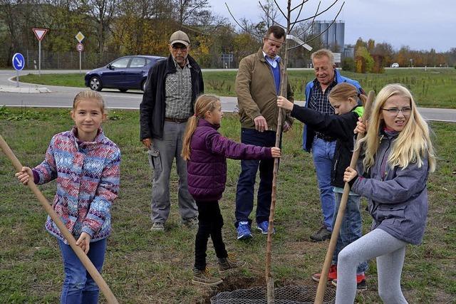 Kinder pflanzen zehn Apfelbäume