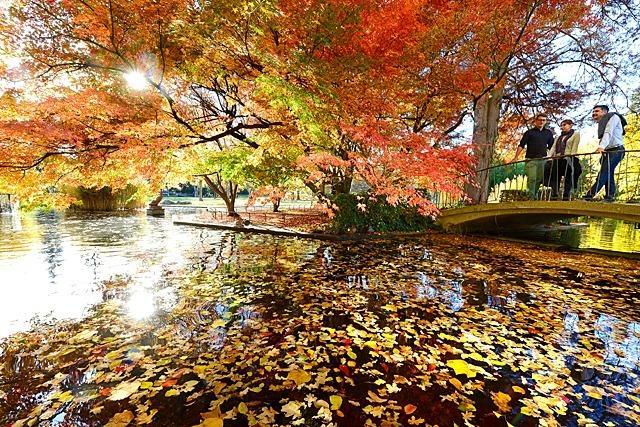 Fotos: Herbstliches Freiburg