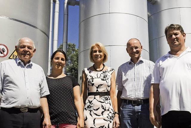 Biogas aus Wind- und Sonnenstrom