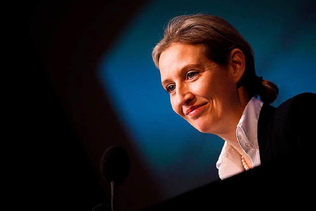 Alice Weidel unter Druck    Foto: dpa