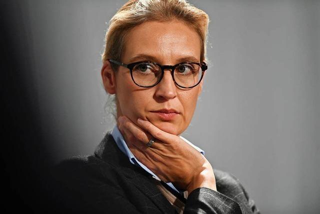 Weidels AfD-Kreis erhielt weitere Großspende aus Belgien