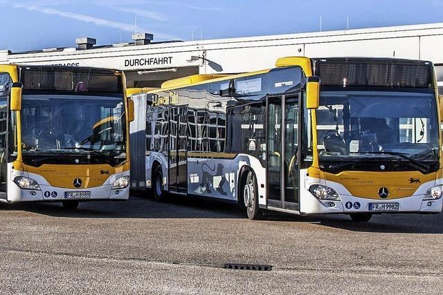 SWEG setzt auf eigene Busfahrerschule